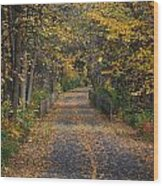 Autumn On Bike Trail  Wood Print