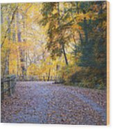 Autumn On Forbidden Drive Wood Print
