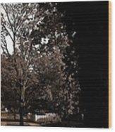 Autumn On Maple Road Wood Print