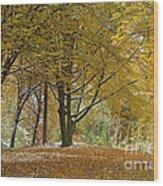 autumn on Moenchsberg in Salzburg Wood Print