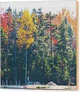 Autumn On The Fulton Chain Of Lakes In The Adirondacks II Wood Print