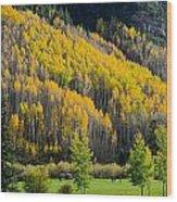Autumn On The Links Wood Print