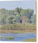 Autumn On The Marsh Wood Print