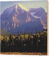 Autumn On The Mount Wood Print