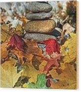 Autumn On The Rocks 2 Wood Print