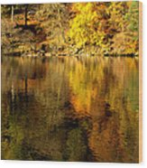Autumn On Ullswater Wood Print