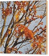 Autumn Orange Wood Print by Guy Ricketts