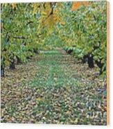 Autumn Orchard Wood Print