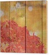 Autumn Outdoors 1 Of 2 Wood Print