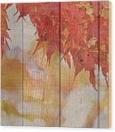 Autumn Outdoors 2 Of 2 Wood Print