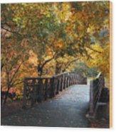 Autumn Overpass Wood Print