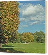Autumn Panorama 1 Wood Print