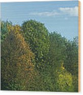 Autumn Panorama 3 Wood Print