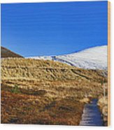 Autumn Panorama In Cairngorms National Park With Cairn Gorm Scotland Wood Print
