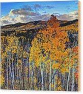 Autumn Pass Wood Print
