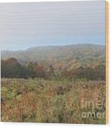 Autumn Pasture Wood Print