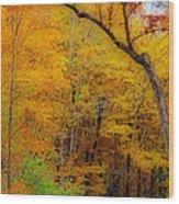 Autumn Peak Colors Wood Print