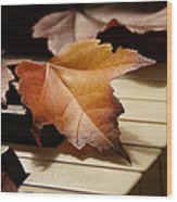 Autumn Piano 13 Wood Print
