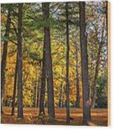 Autumn Pines Square Wood Print