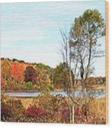 Mendon Ponds In Autumn Wood Print