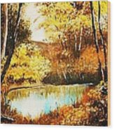 Changing Of The Season Wood Print