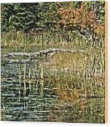 Autumn Pond Scene Wood Print