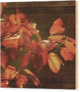 Autumn Promise Wood Print