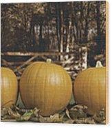 Autumn Pumpkins Wood Print by Amanda Elwell