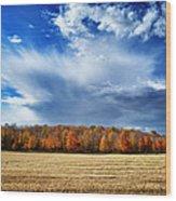 Autumn Rain Over Door County Wood Print