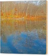 Autumn Reflection 2 Wood Print