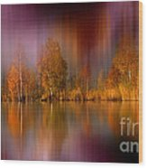 Autumn Reflection Digital Photo Art Wood Print