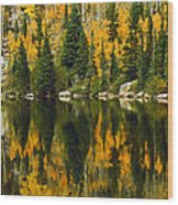 Autumn Reflections At Bear Lake Wood Print