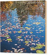 Autumn Reflections Wood Print by Bill Wakeley