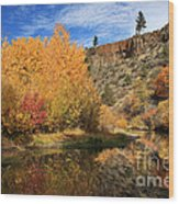 Autumn Reflections In The Susan River Canyon Wood Print