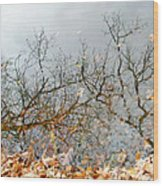 Autumn Reflections On Alloway Lake Nj Wood Print