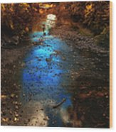 Autumn Reflections On The Tributary Wood Print