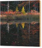 Autumn Reflections - Red Eagle Pond Wood Print by Thomas Schoeller