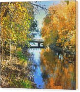 Autumn Reflections On A Friday Afternoon Wood Print