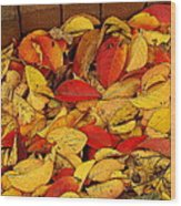 Autumn Remains 2 Wood Print