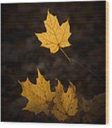 Autumn Remnant Wood Print