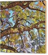 Autumn Revealed Wood Print