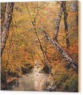 Autumn Riches 1 Wood Print