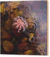 Autumn Ripples Wood Print by Mike Reid