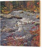 Autumn River Wood Print by Joann Vitali