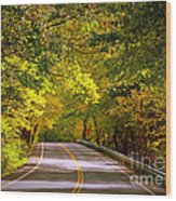 Autumn Road Wood Print by Carol Groenen