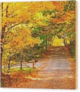 Autumn Road Home Wood Print by Terri Gostola