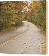 Autumn Road II Wood Print