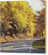 Autumn Road Wood Print by Mary Koval