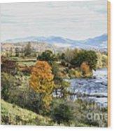 Autumn Rural Scene Wood Print
