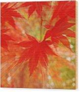 Autumn Rush Wood Print